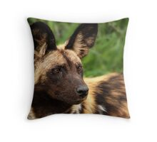 African Painted Wolf  Throw Pillow