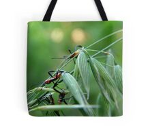 Assassin Bug Nymphs on Oats Tote Bag