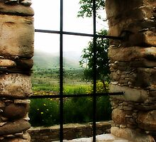 Window with a view.. by Yool