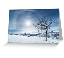 A Moonlit Wonderland Greeting Card