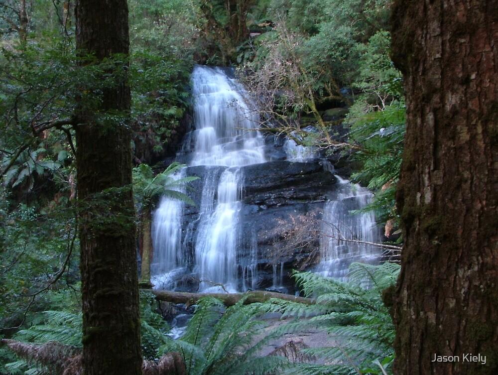 The Falls Otway National park by Jason Kiely