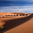 Camel train by kevomanno