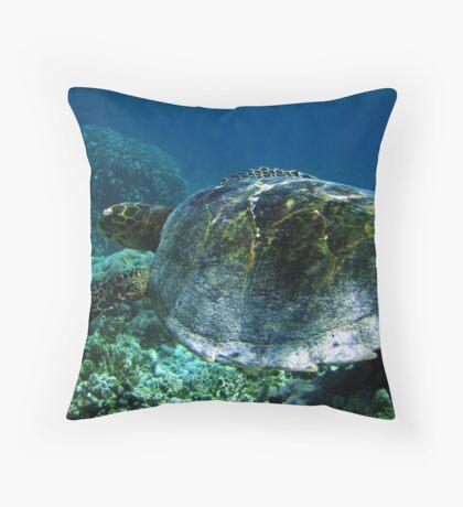 Rare Encounter - Ningaloo Reef, Australia Throw Pillow