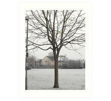 Wacky Tree Art Print