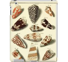 Neues systematisches Conchylien-Cabinet - 166 iPad Case/Skin