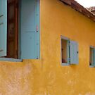 Goree windows by kevomanno