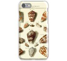 Neues systematisches Conchylien-Cabinet - 159 iPhone Case/Skin