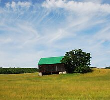 Barn on Butter and Egg Road by deville