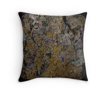Bark & Lichen Throw Pillow