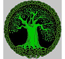 Celtic Tree (Green version) Photographic Print