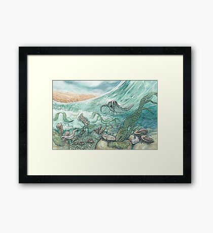 The Cambrian Framed Print