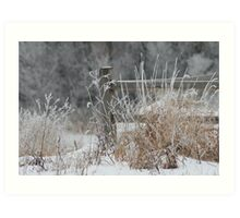 Rustic Fence In The Snow Art Print