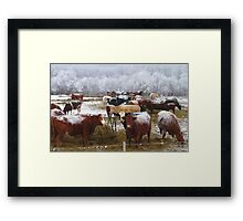 Have You Herd What I Herd? Framed Print