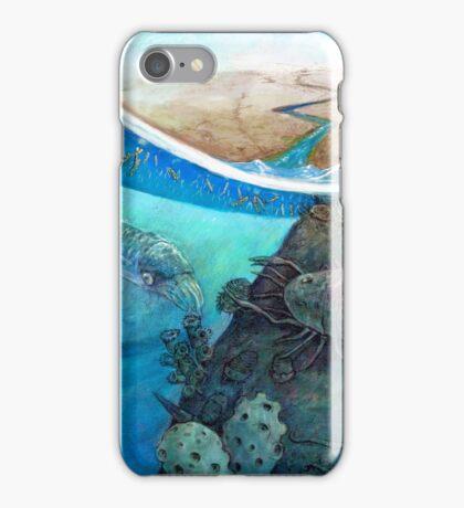 The Ordovician iPhone Case/Skin