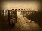Favorite Path by Sandy Keeton