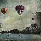 Gulls & Loons by LjMaxx