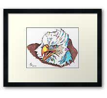 Eagle 2010 Framed Print