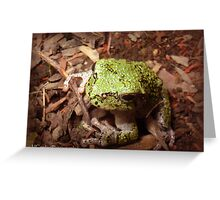 Fabulous Frog Greeting Card
