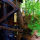 The Grist Mill Wheel at Hurricane Shoals by Janie Oliver