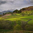 Lake District Farm by Peter Hammer