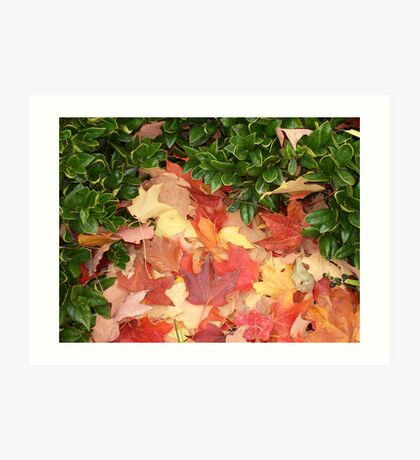 Leaves and Holly - E TN in the Fall Art Print