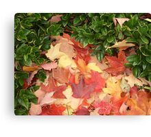 Leaves and Holly - E TN in the Fall Canvas Print