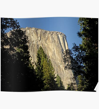 Through the Trees ~ El Capitan Poster