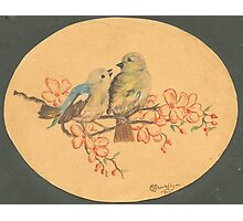 Love Birds - 1945... Photographic Print