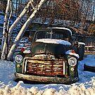 1955 GMC  Pick-Up Truck by Rebecca Bryson