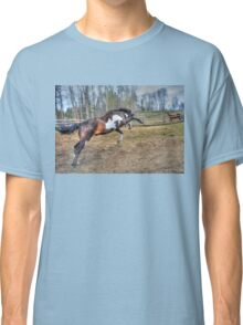 Spirited Pinto Stallion Equine Action Photo Classic T-Shirt