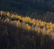 Kyrgyzstan mtns light autumn lightrays by Speedy