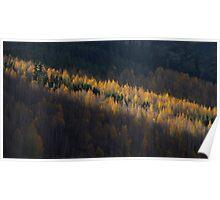 Kyrgyzstan mtns light autumn lightrays Poster