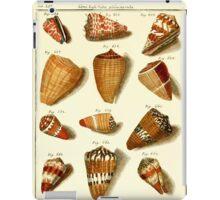 Neues systematisches Conchylien-Cabinet - 163 iPad Case/Skin