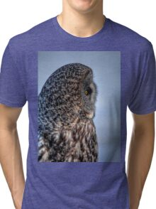 Contemplation - Great Grey Owl Tri-blend T-Shirt