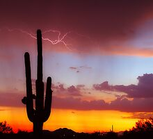 Arizona Sunset with Lightning Strike by Bo Insogna