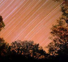 Startrails at Trilby on the Darling River, NSW by Speedy