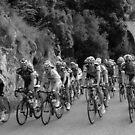 Giro d'Italia by Christine Oakley