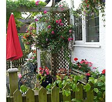 My Cottage ..last Spring!!! Photographic Print