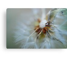 Echoes of Beauty Canvas Print