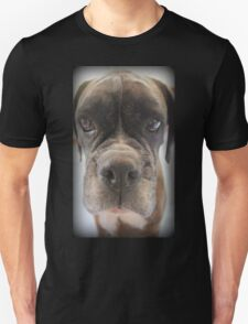 Are There Any Choc Cookies In There? - Boxer Dogs Series T-Shirt