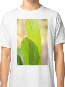 Eucalypt leaves Classic T-Shirt