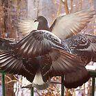 Six-winged Seraph by Sofia Solomennikova