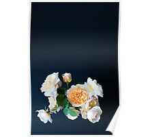 English roses Poster