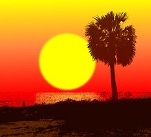 Palm at Sundown by Kevin McLeod