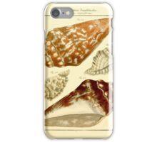 Neues systematisches Conchylien-Cabinet - 197 iPhone Case/Skin
