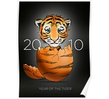 Where baby tigers come from...  Poster