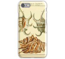 Neues systematisches Conchylien-Cabinet - 190 iPhone Case/Skin
