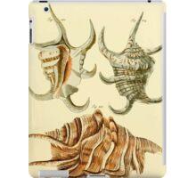 Neues systematisches Conchylien-Cabinet - 190 iPad Case/Skin