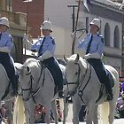police greys by dennis wingard