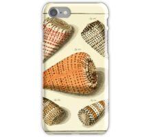 Neues systematisches Conchylien-Cabinet - 164 iPhone Case/Skin